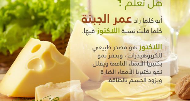 علاقة عمر الجبنة باللاكتوز