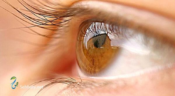 شائعات صحة العيون